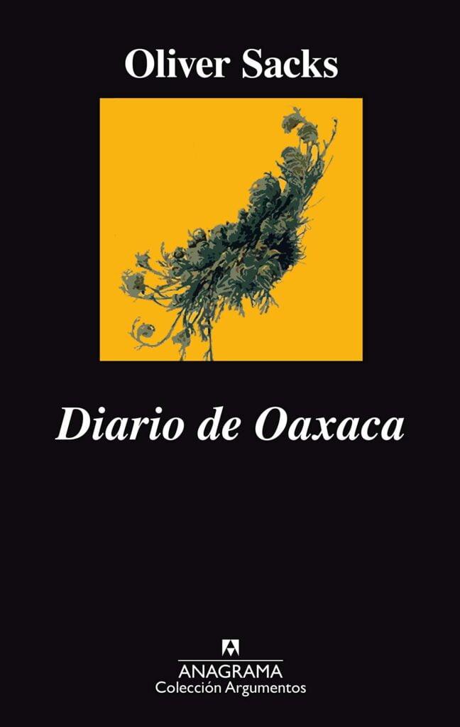 DIARIO A OAXACA