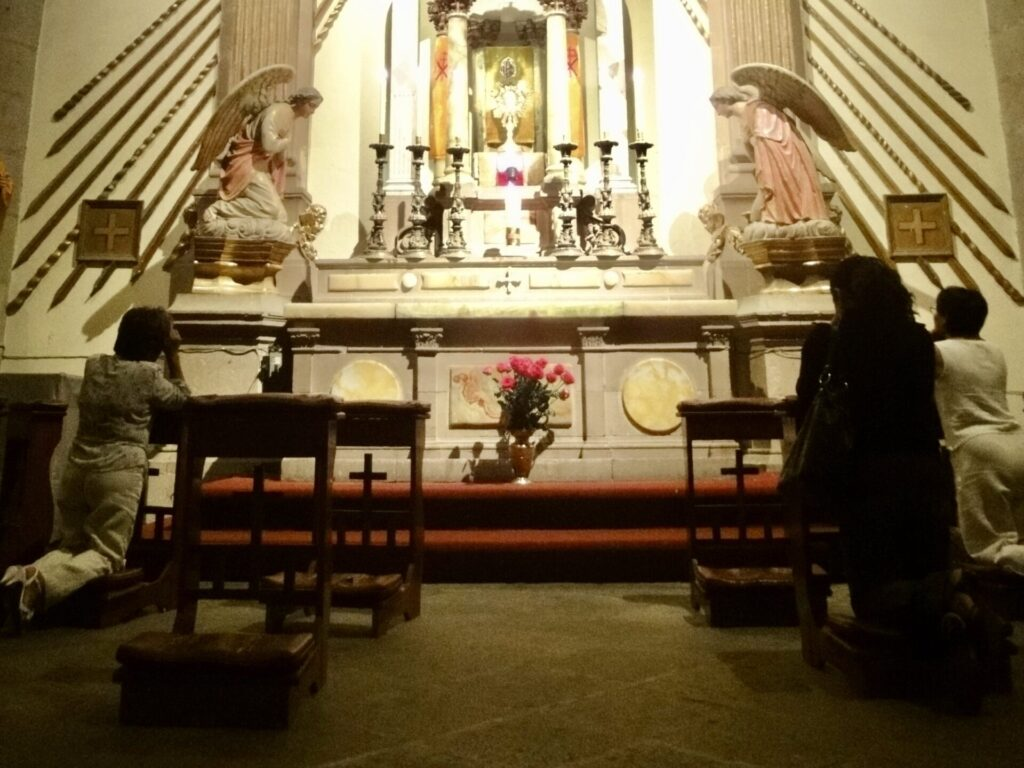 catedral metropolitana 1.17