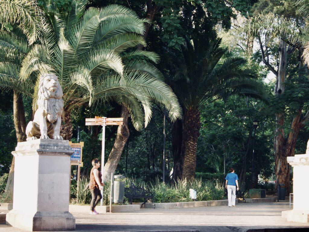 plaza oaxaca
