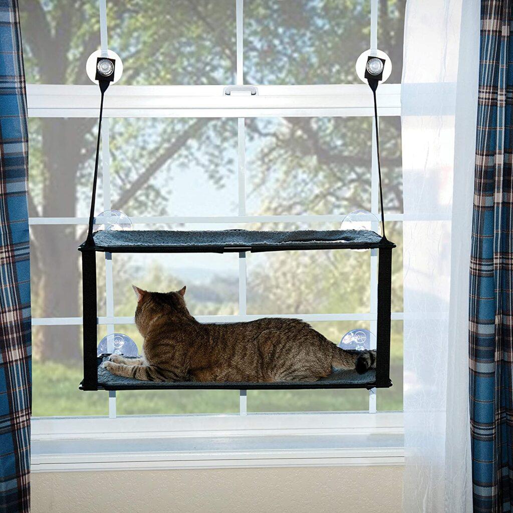 producto para kedi